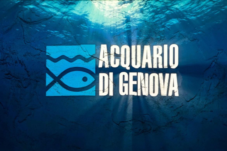 Activities – Aquarium of Genoa